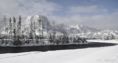 Mount Haynes and the Madison River