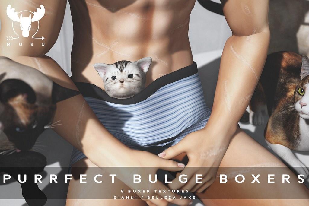 -MUSU- Purrfect Bulge Boxers