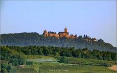 Orschwiller - Saint-Hippolyte et le Haut Koenigsbourg