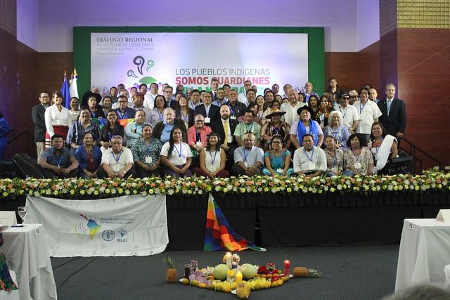 Diálogo Regional de los Pueblos Indígenas de América Latina y  el Caribe