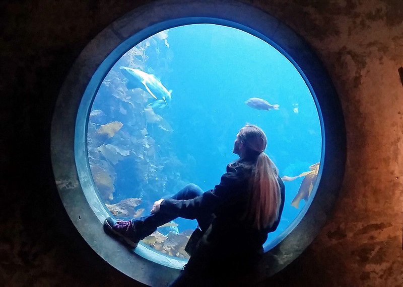 Shawnon at Monterey Bay Aquarium