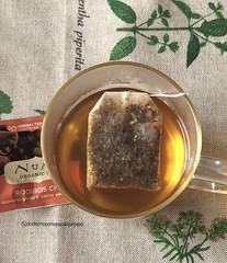 Rooibos chai téa time #delicious #nutricion #querico #mediatarde #haciendoundescanso #infusiones #numitea #quebienhuele #quebiensabe