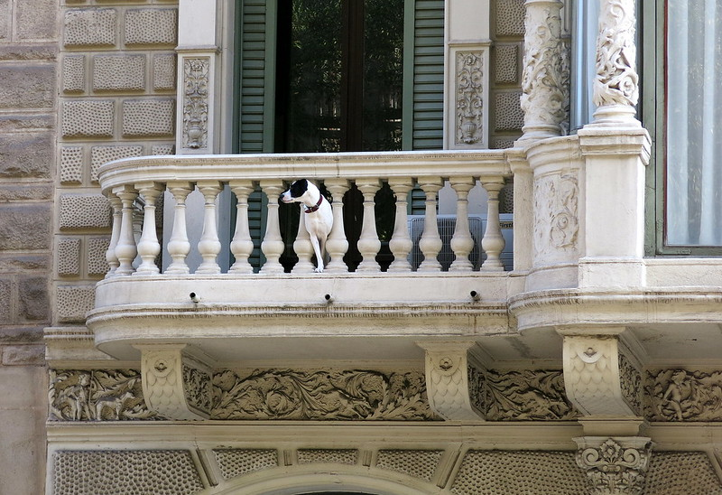 Watchdog, Barcelona