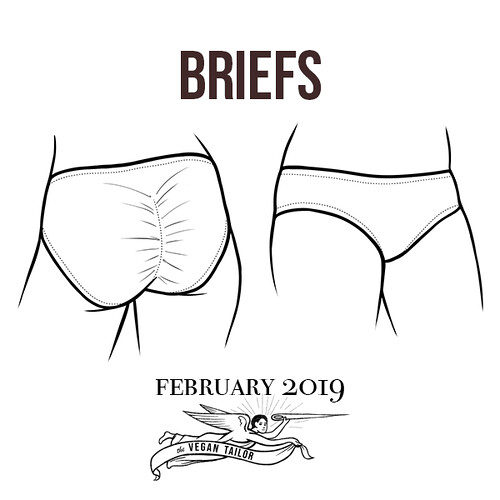 """Seams Legit"" February Lesson: Briefs!e"
