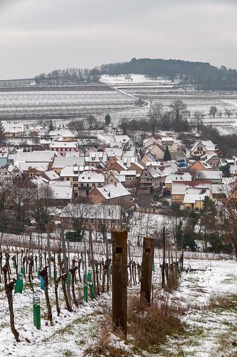 Scharrachbergheim (Scharrachbergheim,France)-105