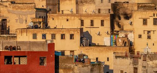 Ancestral city