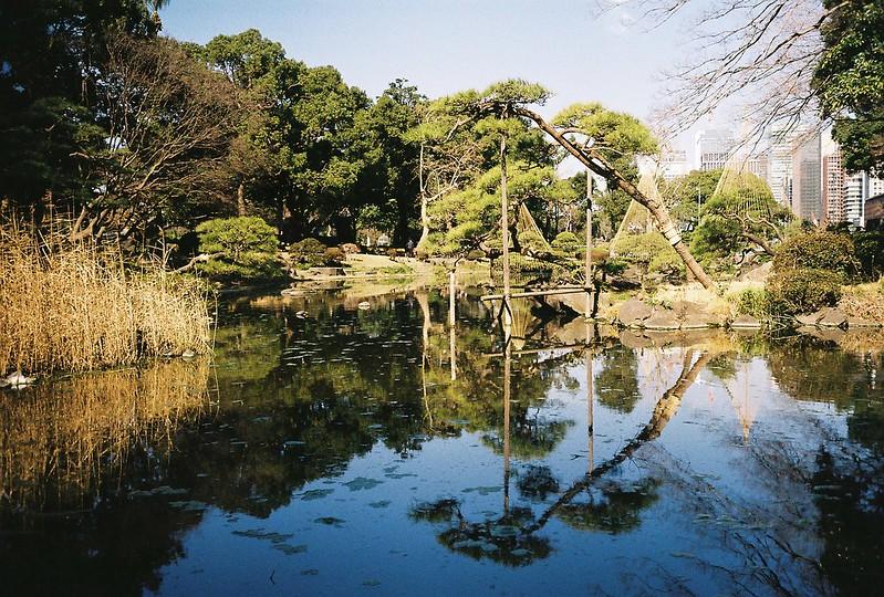 Leica M2+Leitz Summicron 35mm f2 0+Kodac Ultramax 400日比谷公園心字池