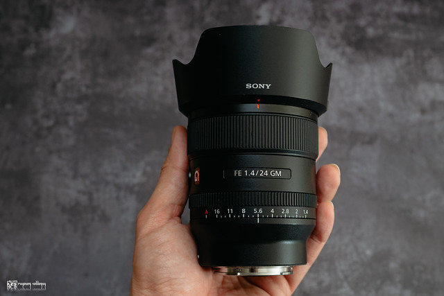融化在情人的眼光裡:Sony FE 24mm F1.4 G Master | 08
