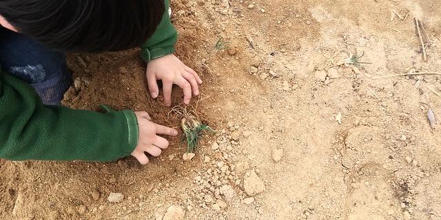 흙에서 놀자