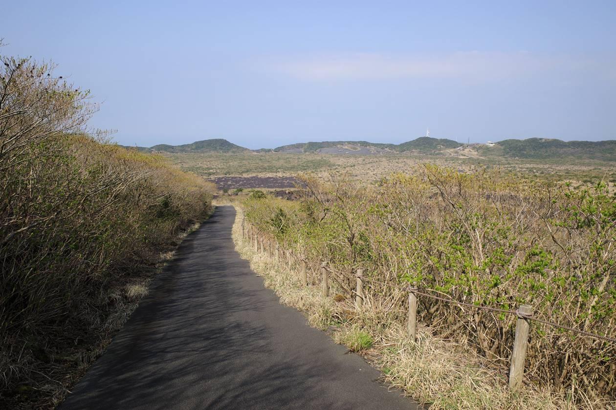 伊豆大島・三原山登山 頂上口コース