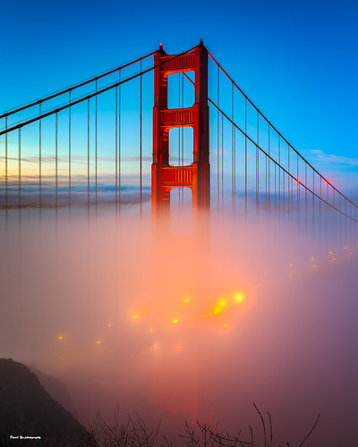 San Francisco Morning Fog