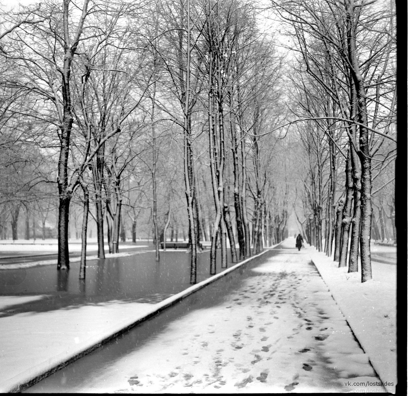 1982. В Летнем саду