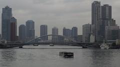 The Sumida River.