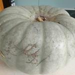 2 individual pumpkins