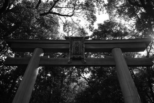 24-02-2019 Omiwa-Jinjya Shrine (1)