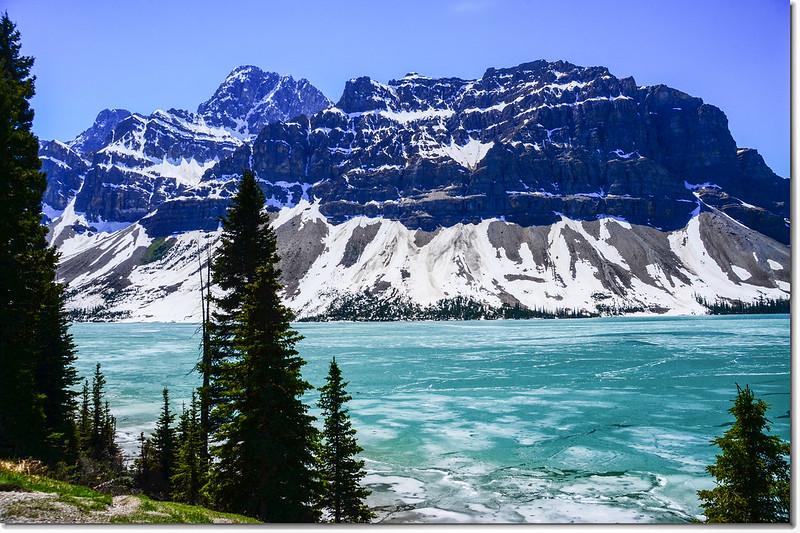 Bow Lake (2)