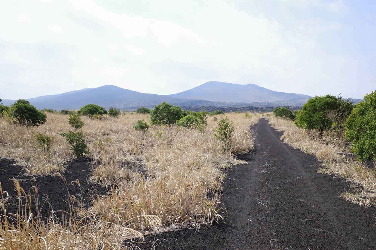伊豆大島登山 テキサスコースから眺める三原山と櫛方山