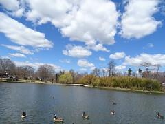 Silver Lake Park - April 10 (1)