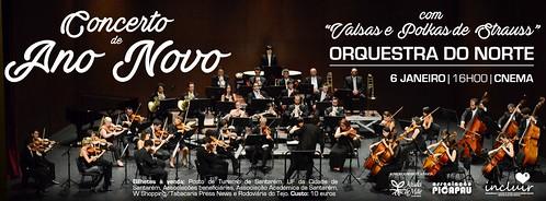 Concerto de Ano Novo - 6 janeiro - 16h00 CNEMA