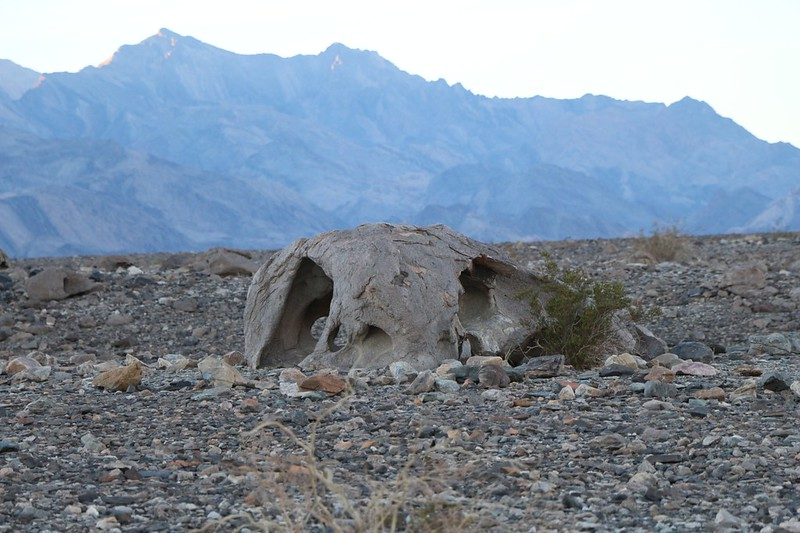 Interesting eroded boulder along the side of Hanaupah Canyon Road