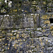 <p><a href=&quot;http://www.flickr.com/people/brendan_doyle/&quot;>Brendan Doyle</a> posted a photo:</p>&#xA;&#xA;<p><a href=&quot;http://www.flickr.com/photos/brendan_doyle/32936631028/&quot; title=&quot;_MG11967-A401R&quot;><img src=&quot;http://farm8.staticflickr.com/7863/32936631028_2fafa3ce13_m.jpg&quot; width=&quot;240&quot; height=&quot;169&quot; alt=&quot;_MG11967-A401R&quot; /></a></p>&#xA;&#xA;