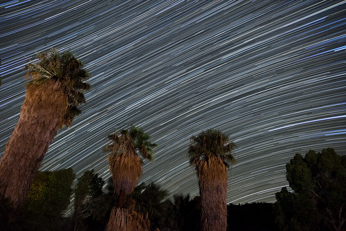 Star Trails at Cottonwood Springs