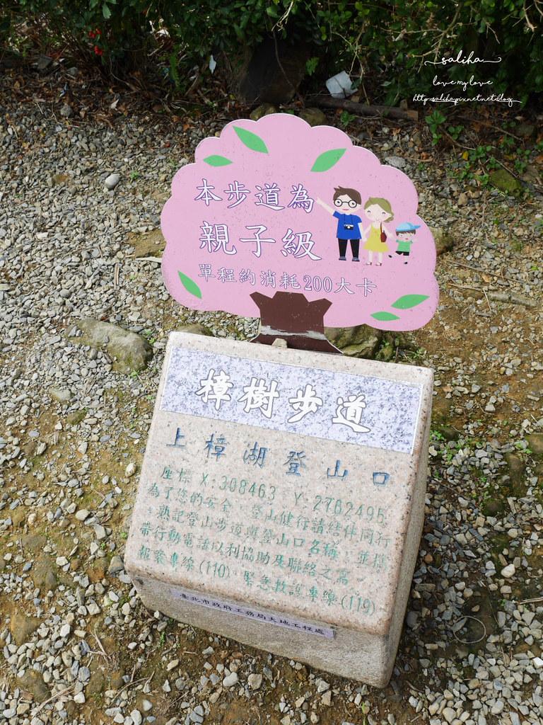 貓空纜車附近景點推薦樟樹步道魯冰花海 (3)
