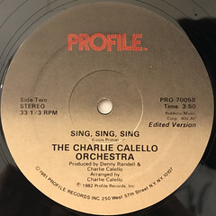 THE CHARLIE CALELLO ORCHESTRA:SING, SING, SING(LABEL SIDE-B)