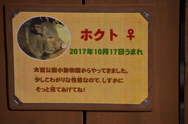 20190103埼玉県こども動物自然公園