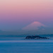 Enoshima Island and Mount Fuji at dawn #5