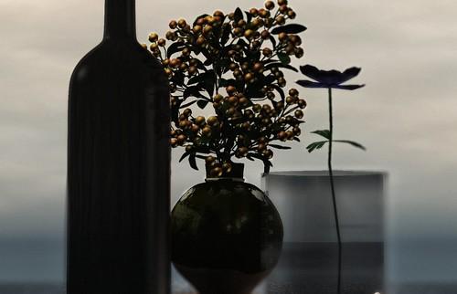 . una danza llena de gardenias plenas reflorecerá .