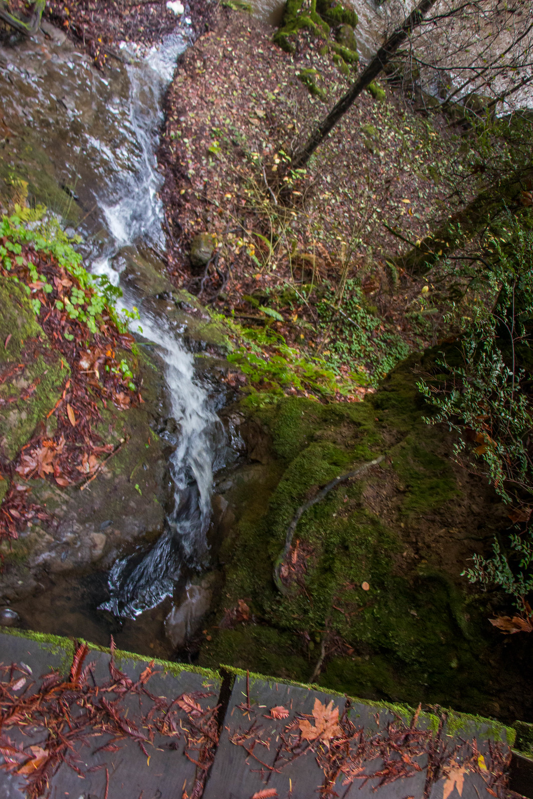 Pomponio Falls