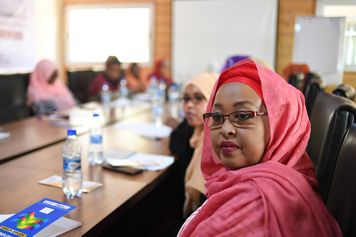 2019_03_03_Roundtable_Discussion -11 | by UNSomalia