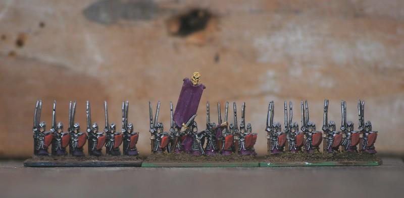 [Armée] Mes Elfes-Noirs - Page 3 47288998062_b641fbfecd_c