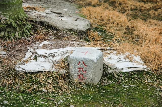南勢三等三角點(# 899 Elev. 15 m) 1