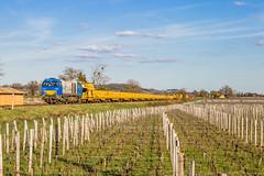20 mars 2019 92 87 0002 020-1 Train Substitution RVB Libourne/Bergerac Saint-Hippolyte (33) - Photo of Saint-Pey-de-Castets
