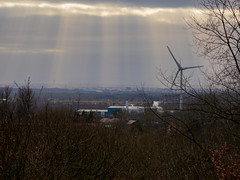 View from Beacon Country Park
