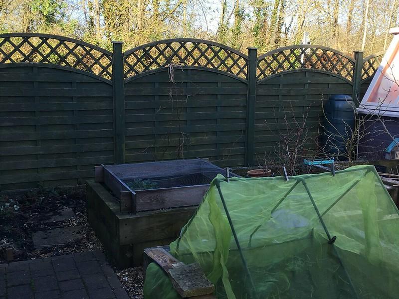 Back garden fence