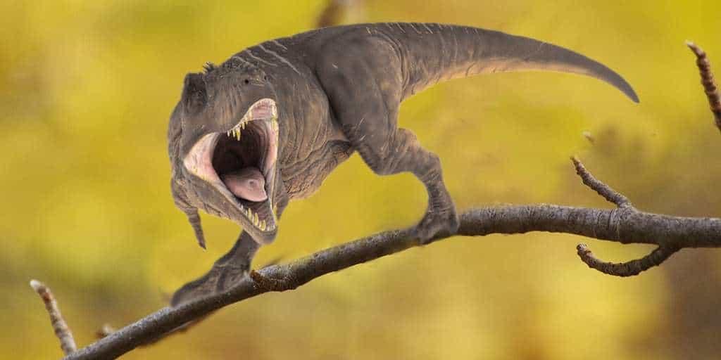 L'ancêtre des T-Rex était très petit