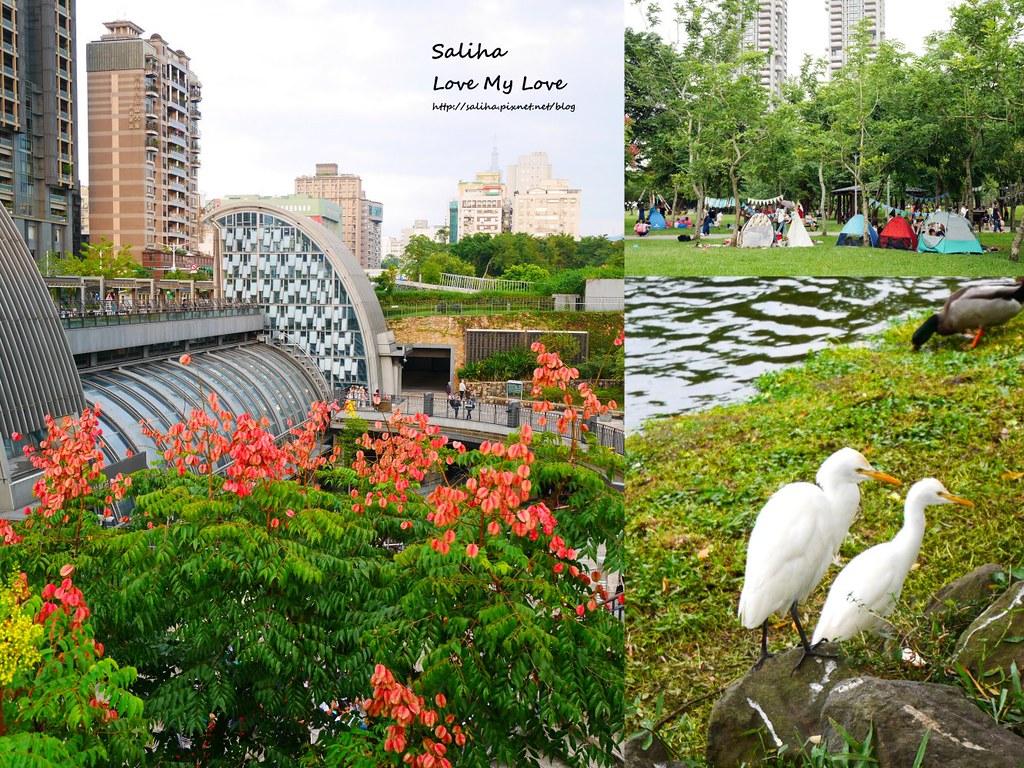 台北景點一日遊大安森林公園