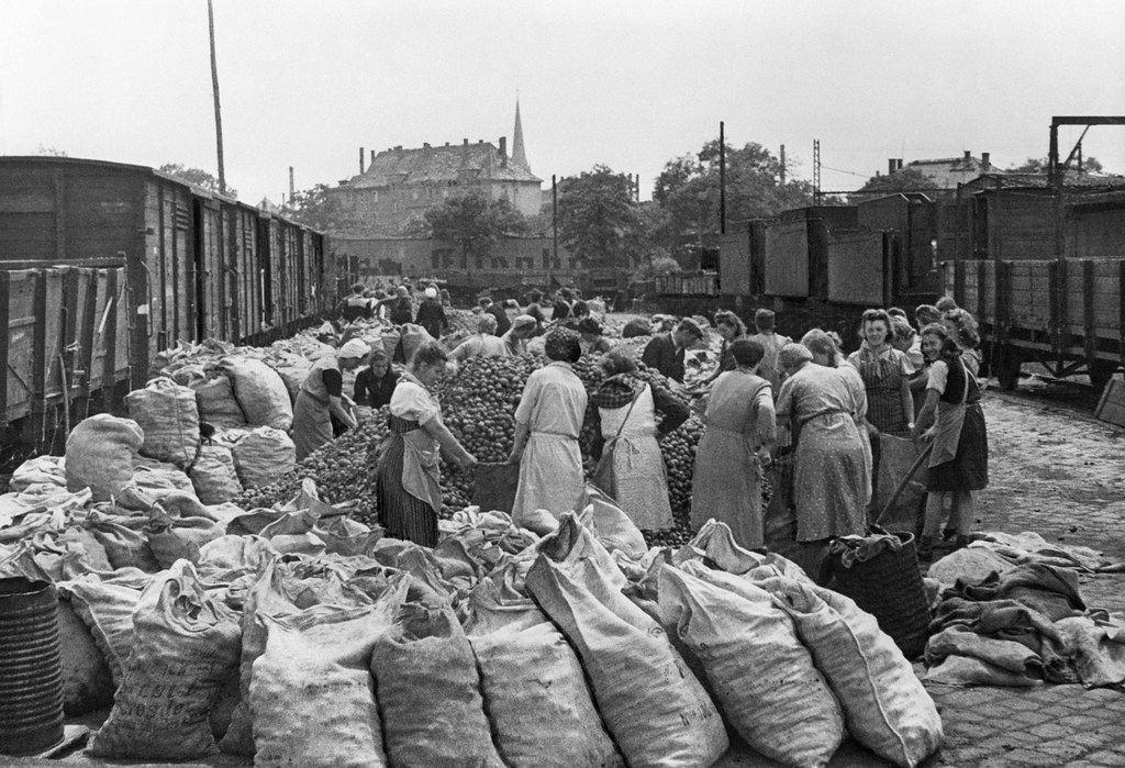 1945. Жители Берлина получают картошку от советской военной администрации в Германии. 19 мая