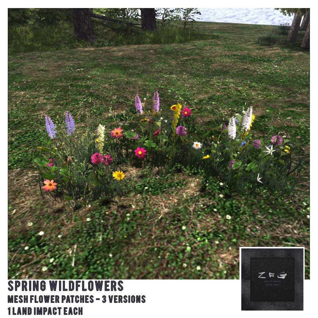 {zfg} home spring wildflowers - TeleportHub.com Live!