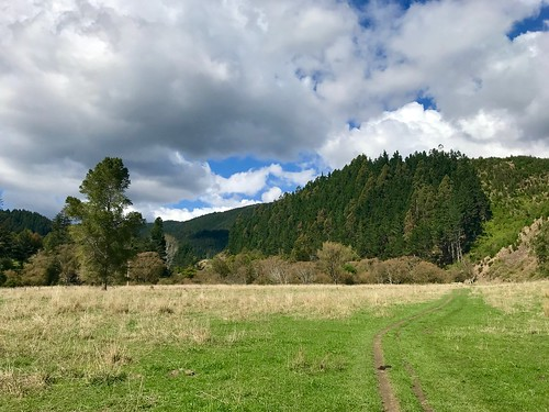 Maitai River Valley walk