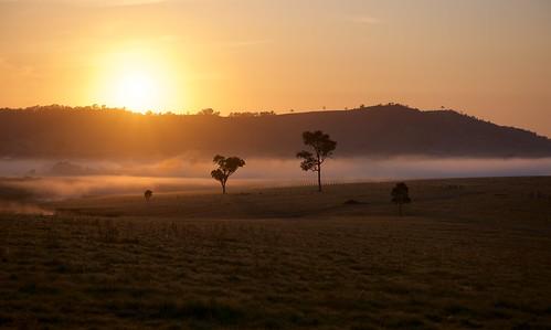 Anambah Sunrise