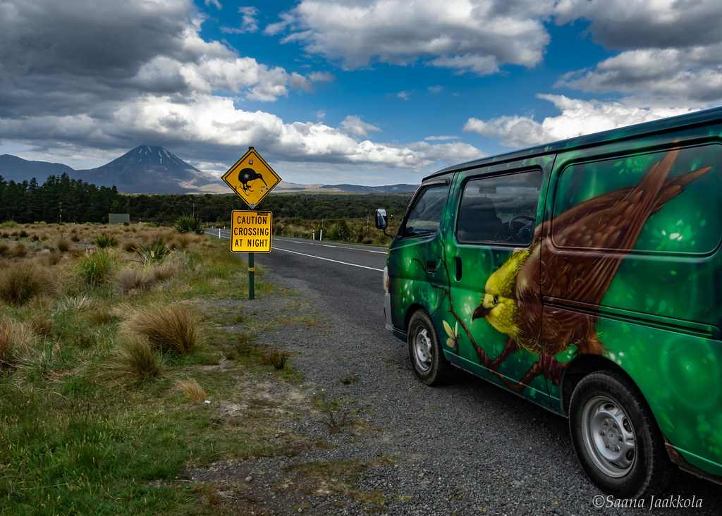 Driving through New Zealand | How to spend a month in New Zealand