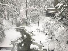 JH Winter '19-182