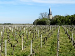Château Verdignan - Photo of Blaignan