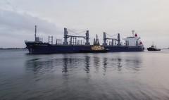 Ship arriving in port