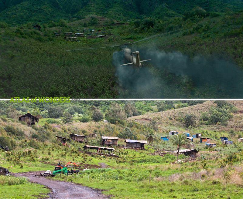 coca plantation set