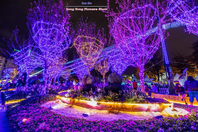 2019年03月16日 - 二零一九年香港花卉展覽